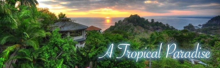 A Tropical Paradise.jpg