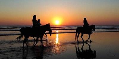 playa grande horse back riding.jpeg
